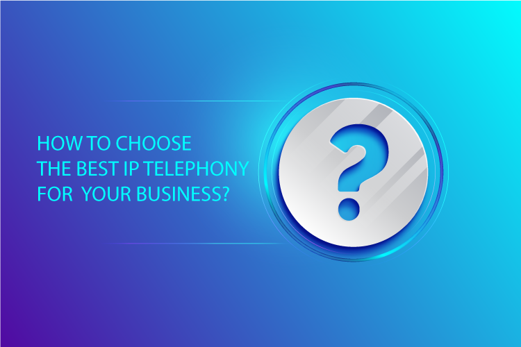 IP telephony for business