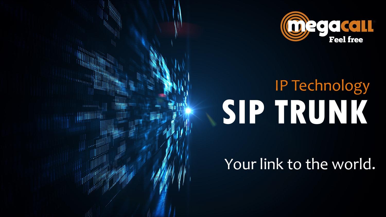 sip trunking international